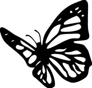 Najrã³å¼niejsze Informacje O Motyle Na Sciane Szablon Do